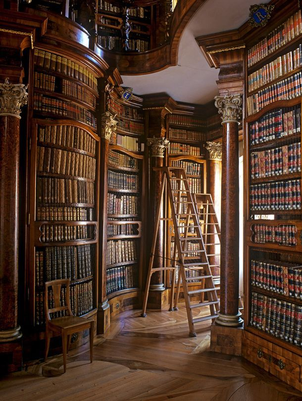 Gorgeous! I would love to get lost in this library daily.