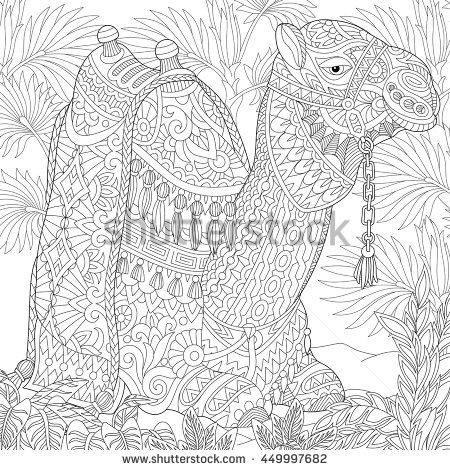 165 Best Adult Colouring Wild Animals Images