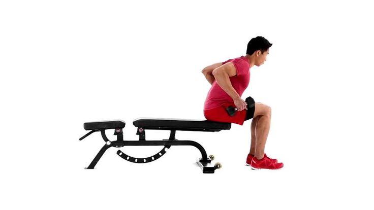 Remada sentada com halteres : Ombros, Parte superior da coluna, Abdominais - MSN Saúde e Bem-estar