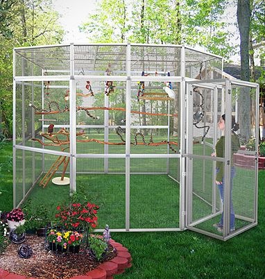Outdoor+Bird+Supplies | huge-outdoor-bird-cage-outdoor-aviary-outdoor-bird-enclosure.jpg