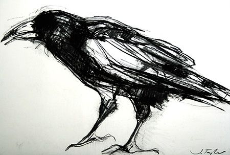 charcoal crow - Google-haku