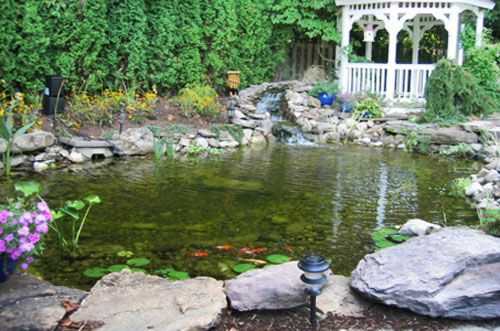 17 best images about bepaw 39 s pond on pinterest robins for Cool koi ponds