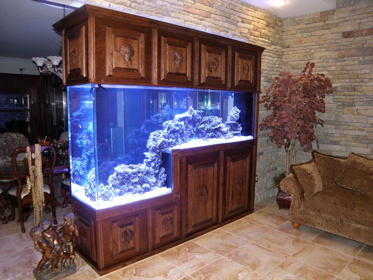 126 Best Images About Aquariums Fish Tanks On Pinterest