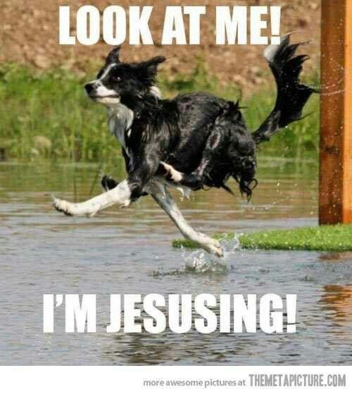 So funny!