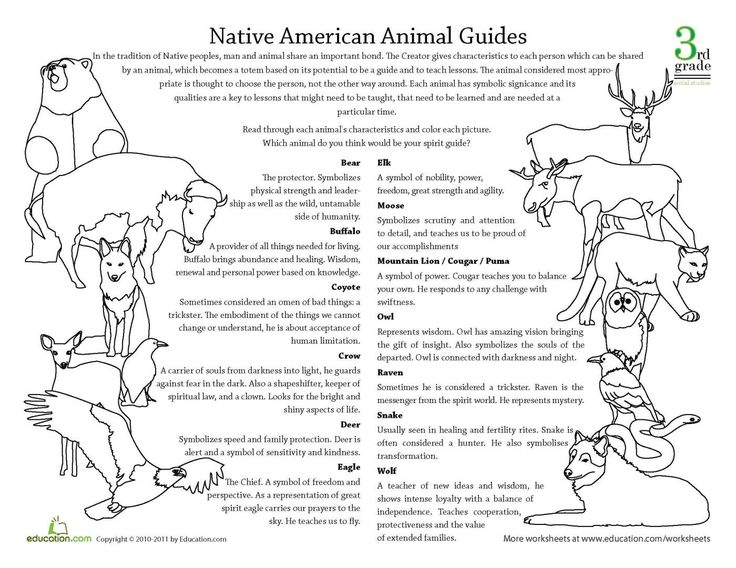 Native American Animal Guides and their meanings – Intl. Starseed Network