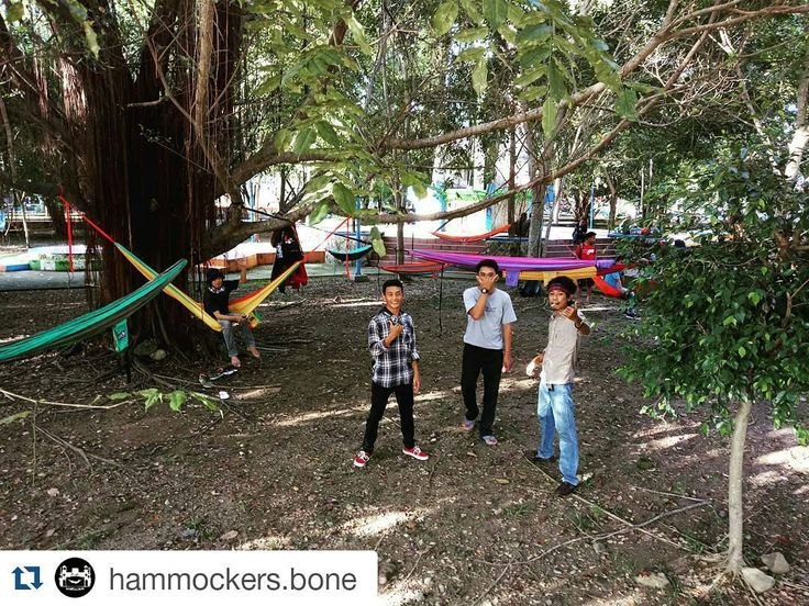 @hammockers.bone  Pilih mana suka  kalau saya lebih suka kamu  kamu yg like foto ini  Huahuahuahuaaaaaaa        #hammockersbone #hammockerssinjai #hammock #hammockid #hammocklife #hammockliving #keephanging #hammockers #hammockersindonesia #hammockid #seeyounexttree #salamgantung by @hammockers_sinjai