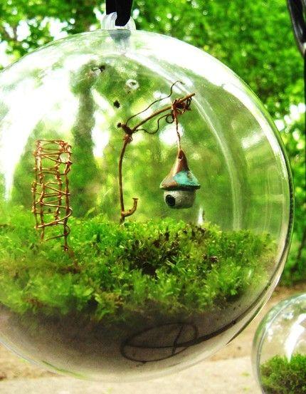 miniature garden in hanging glass ball...: Mossterrarium, Idea, Tiny Gardens, Terrariums, Fairies Houses, Miniatures Fairies Gardens, Moss Terrarium, The Secret Gardens, Miniatures Gardens