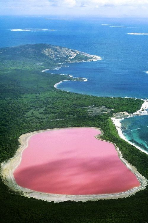 Lake Hillier, Australia | The only natural Pink Lake in the World. Enjoy RushWorld boards, PARADISE PLANET, EYE CANDY ARCHITECTURAL MASTERPIECES and ART A QUIRKY SPOT TO FIND YOURSELF. Follow RUSHWORLD on Pinterest! New content daily, always something you'll love!