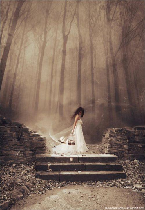 Dawn-of-Dark: Photos, Dreams, Fantasy Art, Beautiful, Dark, Fairytales, Photography