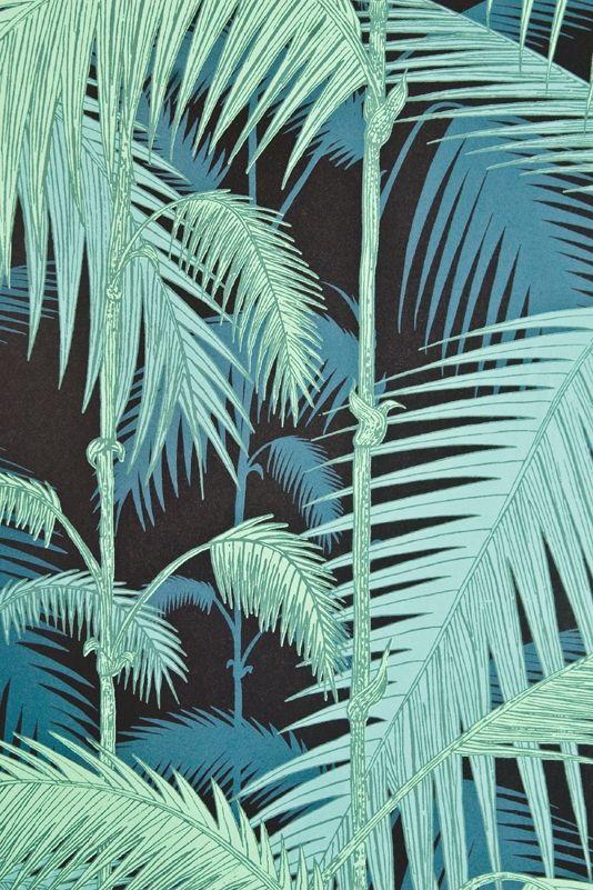 Palm Jungle Wallpaper Contemporary Illustrated Palm tree design wallpaper in aqua on Black.