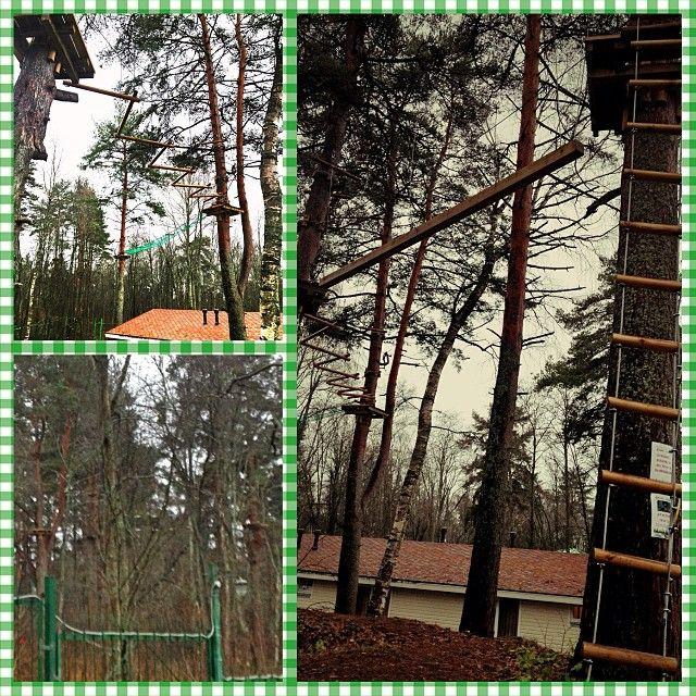 Верёвочный парк. http://www.losevoda.ru/activniy-otdyh/read/Aktivnyj-otdyh/Veryovochnyj-park/