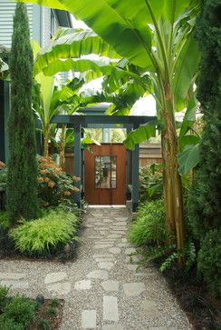 """""""Banana palms side garden""""  """"Love garden...sub troppo garden...Display Garden"""""""