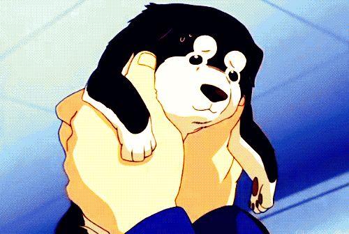 fullmetal alchemist roy mustang gif... I LOVE DOGS