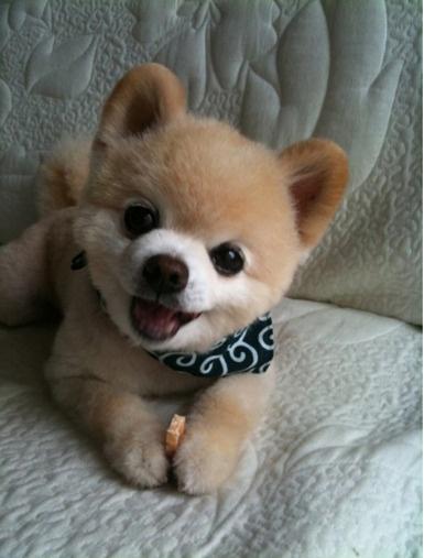 Soooooooooooooooooooooooooooooooooooooooooooooooooooooooooooooooooooooooooooooooooooooooooooooooooooooooooooooooooooooooooooooooooooooooooooooooooooooooooooooooooooooooooooooooooooooooooooooooooooooo cute!