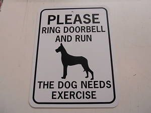 Please ring doorbell and run. The dog needs exercise.