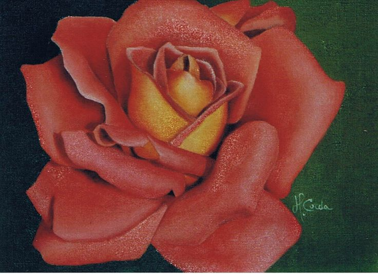 Nature, Pink N 151, Oil Painting, 32x23,5 cm 2002