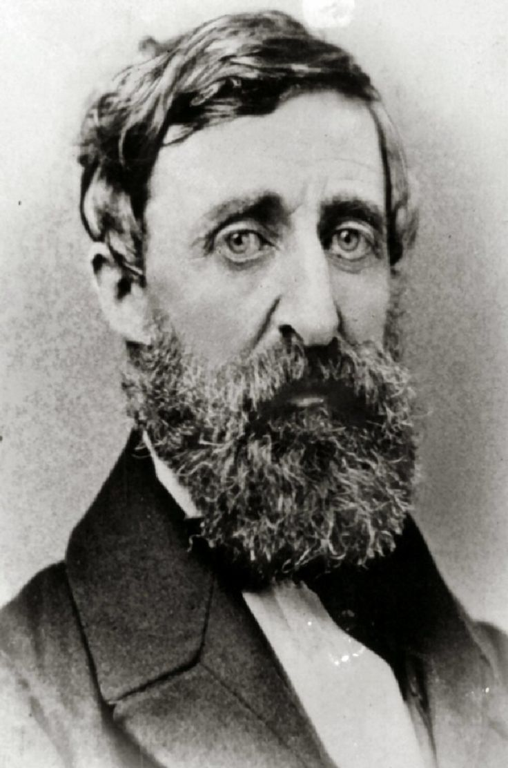 """Henry David Thoreau July 12, 1817 - 1862. He lies in Sleepy Hollow cemetery in Concord Mass., alongside Hawthorne and Emerson… Before he died Thoreau exclaimed: """"Now comes good sailing!""""    """"A truly good book teaches me better than to read it. I must soon lay it down, and commence living on its hint. What I began by reading, I must finish by acting."""" — Henry David Thoreau http://my-ear-trumpet.tumblr.com/post/11618393808/the-fate-of-the-country-does-not-depend-on-how-you"""