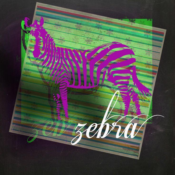 serie zebra. original.
