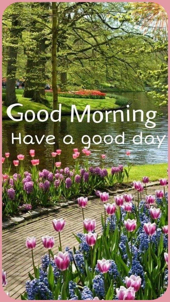 Pin On Good Morning 12