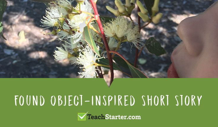 activities and ideas for teaching sustainability in the primary classroom - found object inspired short stories