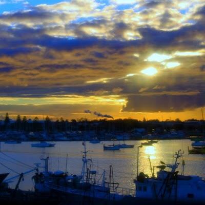 Tauranga Harbour,
