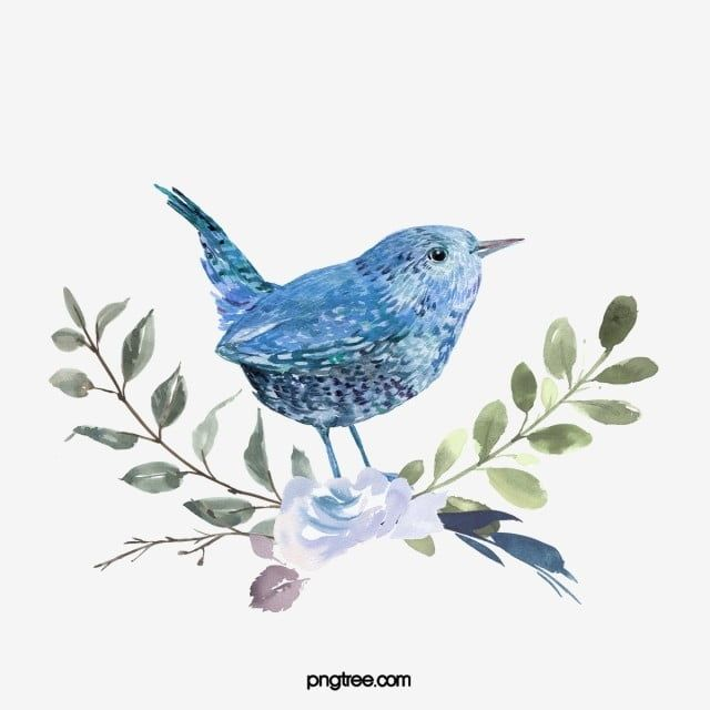 Blue Bird Watercolor Hand Drawn Animal Animal Clipart Bird Blue Png Transparent Clipart Image And Psd File For Free Download Animal Clipart Animal Drawings Animal Silhouette