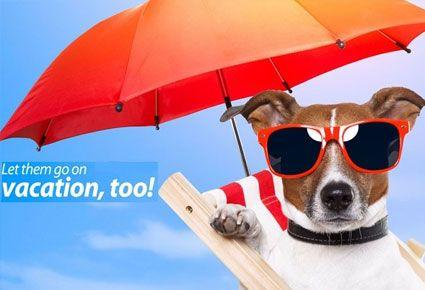 Ταξιδεύετε; €4.80 από €8 (Έκπτωση 40%) για 1 Μέρα Διαμονής για το Σκυλάκι σας, στο Ξενοδοχείο Σκύλων Pet Hotel στην Κοκκινοτριμιθιά, Λευκωσία! Περιλαμβάνει Βόλτες, Παιχνίδι και Καθαριότητα του Αγαπημένου σας Κατοικιδίου.