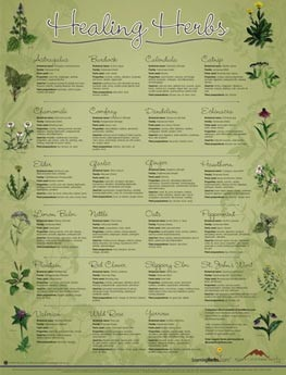 Healing herbs poster. for-the-wee-little-folk