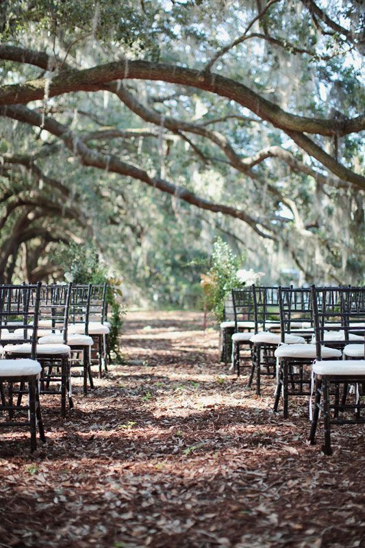 Lowcountry Ceremony Setting-Belfair Plantation- Spencer Special Events- Landon Jacob Photography- Branches Floral Design