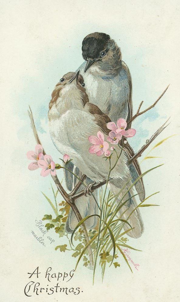 Старинные открытки с животными и цветами, шаблоны