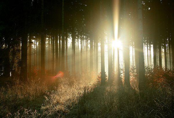 Ήλιος...