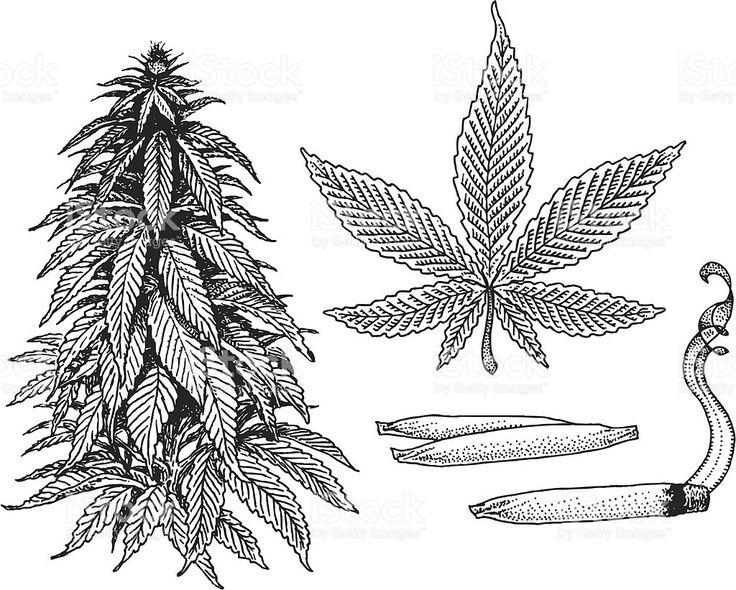 Imagenes De Marihuana Con Calaveras