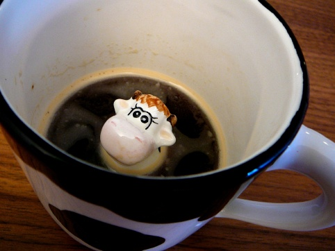 SURPRISE!!! Its a wee little cow peeking out of my coffee :) HAHA that would wake me up