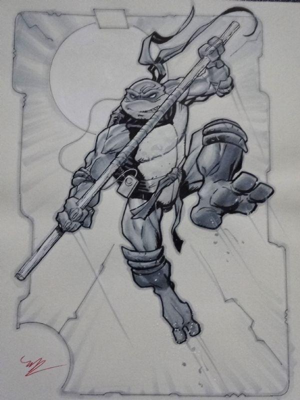 Teenage Mutant Ninja Turtle - Donatello, Leonardo,... - Art Vault