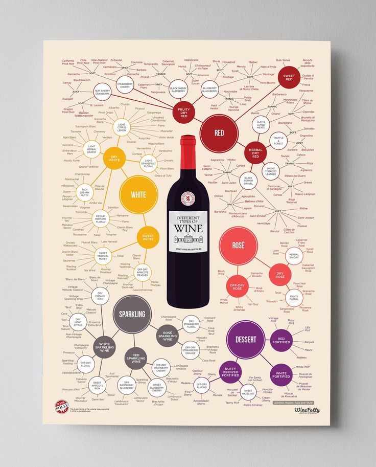 Different Types of Wine Poster 18x24 by Wine Folly