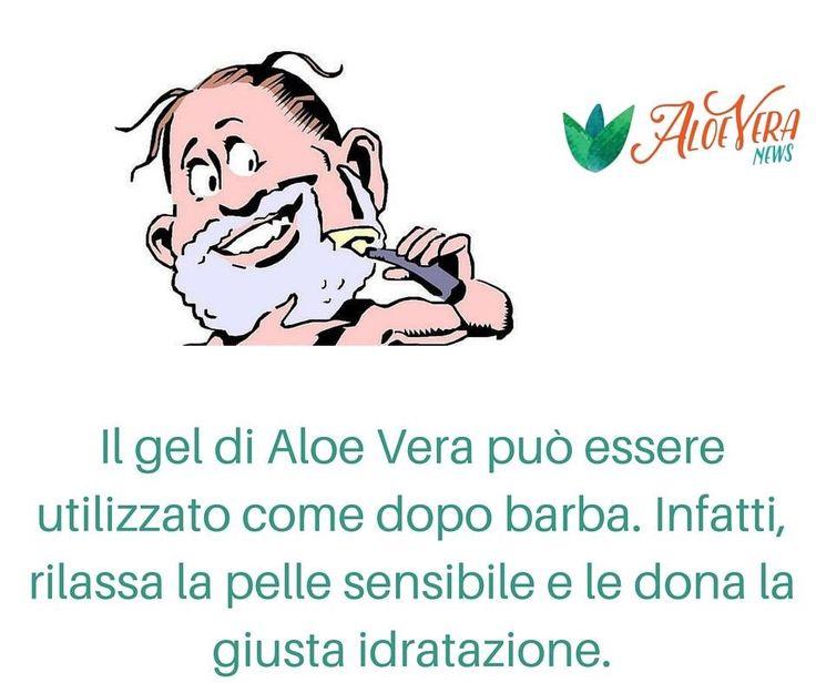 Www.aloeveranews.net