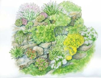 Tuck these drought-tolerant herbs in rocks for a rock wall garden.