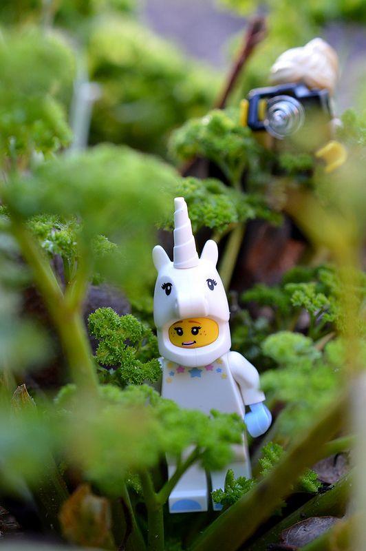 Lego Minifigure Series 13:3 - The Unicorn Girl - Habitat Mythical Creature sighting in the garden