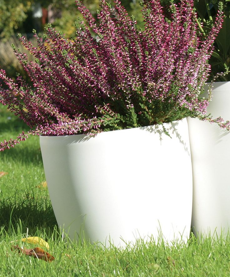 Emsa Pflanztopf, Blumentopf weiß 22 cm