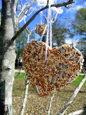 Birdseed Biscuits. Hang from your trees to feed birds during the winter. Great kid-friendly craft.