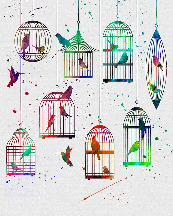 Birds in Cages