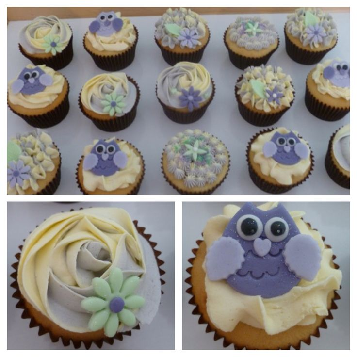 Baby shower owl cupcakes