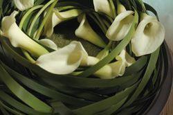 designkrans maken met calla's of zanthedeshia - krans maken met gaas en bladeren