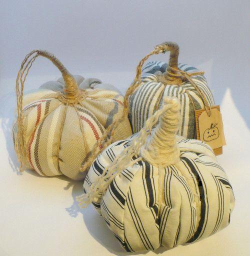 Dýně, pumpkins