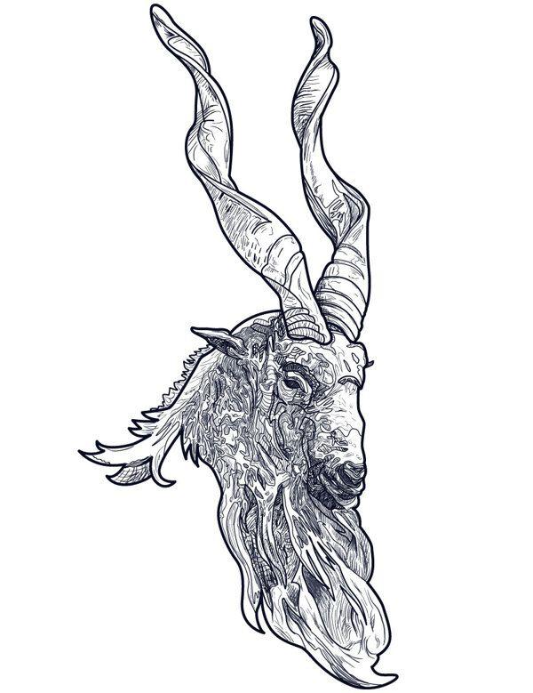 the mighty markhor by tom ralston via behance illustration sketch vector pinterest. Black Bedroom Furniture Sets. Home Design Ideas