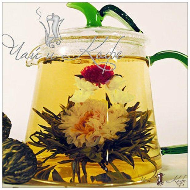 Среди великого разнообразия связанных чаев Китая, совершенно особым образом выделяется чай под названием Рождение Венеры. Это настоящий шедевр китайского чайного искусства. Доставка Почтой по всей России. Оплата при получении или на карту.  #горячийшоколад #какао #японскийчай #иванчай #кофевзернах #вкусно  #черныйчай #доброеутро #молотыйкофе #мате #наслаждение #каркаде #кофемойдруг #чай #шоколад #чайныйнабор  #кофеманка   #москва #турка  #подарки #счашкой #мск #чайник #красныйчай