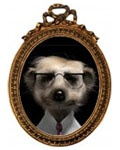 Sergei - Head of IT at comparethemeerkat.com