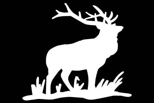 #elk #hunting #shedhunting #deer #outdoors #wildlife #nature #antlers #bowhunting #browngold #hiking #hunt #whitetail #mountains #tinesup #colorado #archery #sheds #elkhunting #muledeer #adventure #deerhunting #antler #moose #travel #beautiful #sickforit #wildlifephotography #wapiti #love Check out this item in my Etsy shop https://www.etsy.com/listing/276884134/elk-montana-hunting-vinyl-decal-die-cut