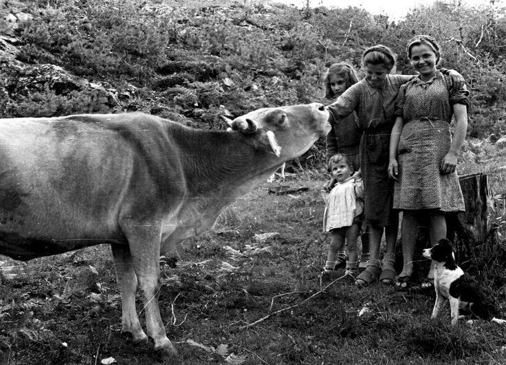 Lombardia Contadini di Valmadrera 1946 #TuscanyAgriturismoGiratola