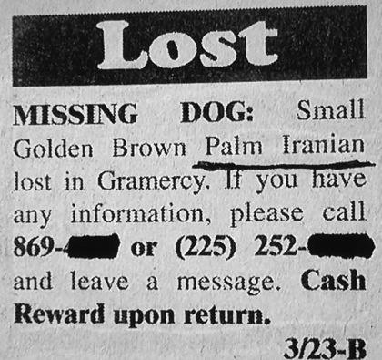 Last seen with a Malt Tease.